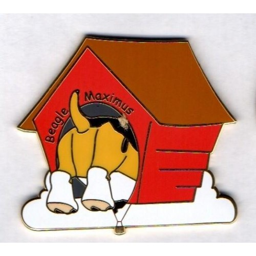 Beagle Maximus Dog Kennel Gold