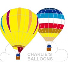 Charlie's Balloons Double Silver