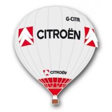 Citroen Special Shape G-CITR Silver