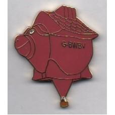 Flying Pig G-BWBV Gold